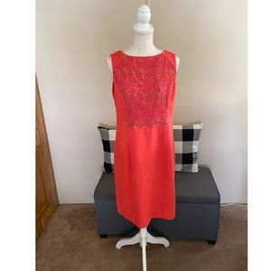The Limited Lace Accent Dress Size 12